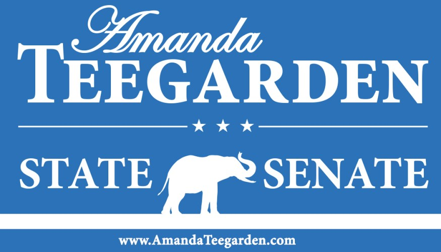 Amanda Teegarden Gets High Marks from the NRA for Senate District 39