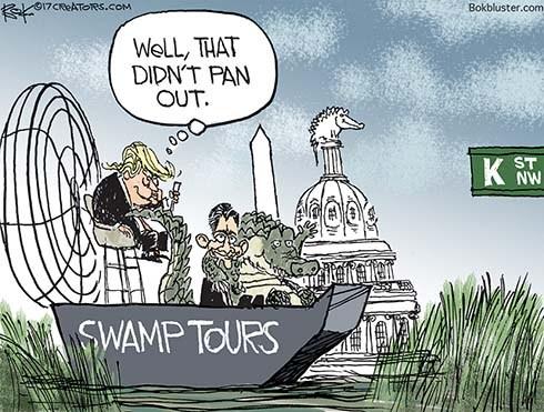 Washington Swamp Tour Guide