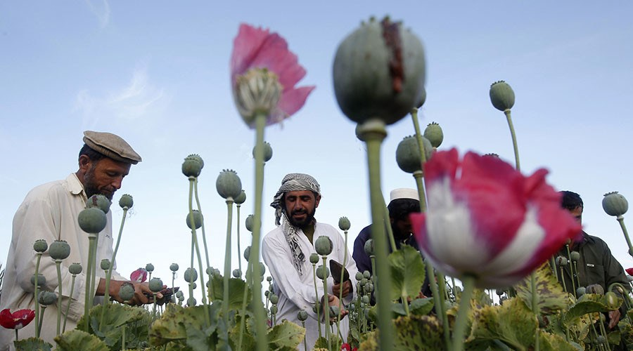 R3publicans: 'It's US baby, and I'm not proud of it – Afghanistan is world's biggest drug dealer'