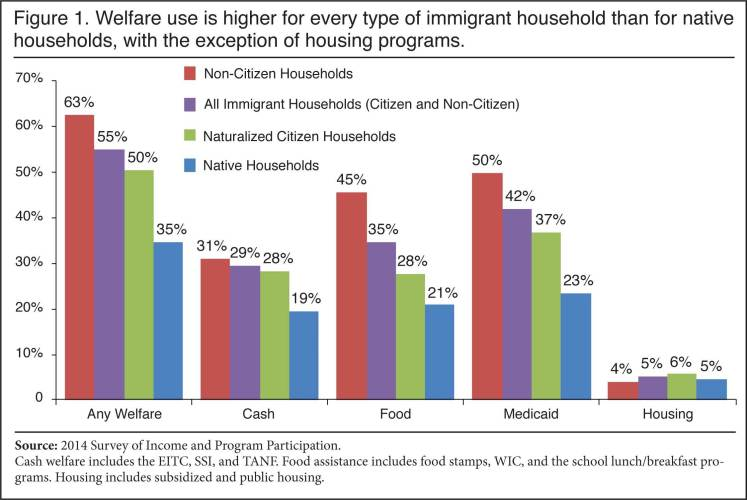 Census confirms: 63 percent of 'non-citizens' on welfare, 4.6 million households