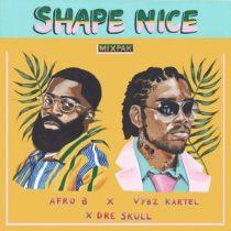 Afro B, Vybz Kartel & Dre Skull – Shape Nice