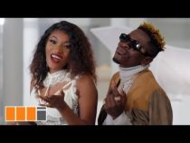 [Video] Wendy Shay ft. Shatta Wale – Stevie Wonder