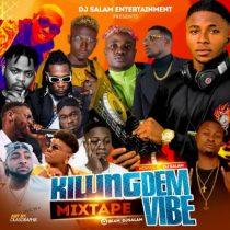 [Mixtape] DJ Salam - Killin Dem Vibes Mix
