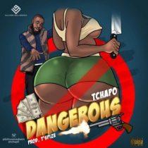 Tchap0 – Dangerous