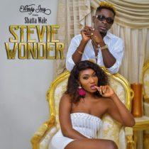 Wendy Shay ft. Shatta Wale – Stevie Wonder