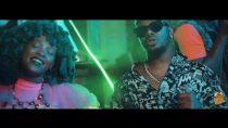 [Video] Major League & Focalistic ft. Kabza De Small, Moonchild Sanelly, The Lowkeys – Ndikuze