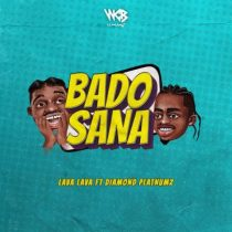 Lava Lava ft. Diamond Platnumz – Bado Sana
