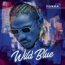 Yonda ft. Davido – I Gat Doe
