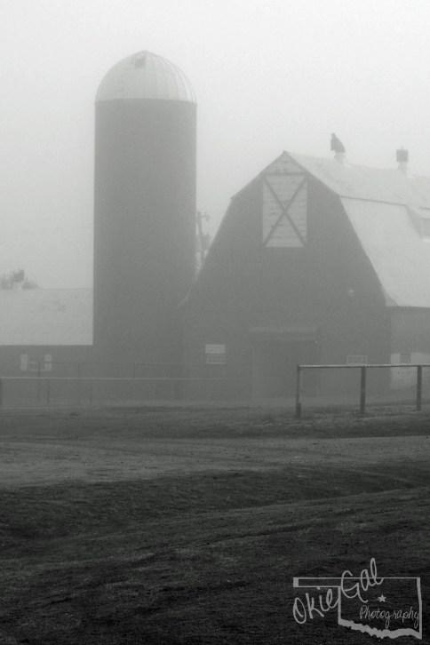 Mist blw