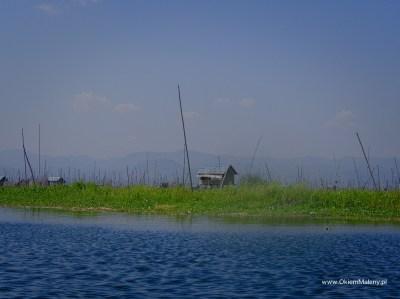 pływające ogrody, Inle Lake, Mjanma