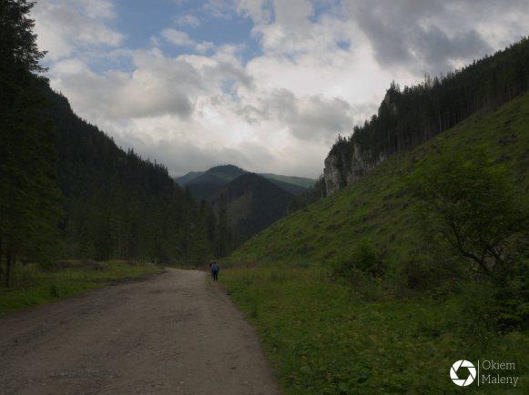 Dolina Chochołowska, Tatry