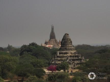 krajobrazy Bagan