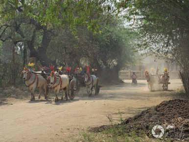 udekorowane wozu w Bagan, niedaleko Irrawady