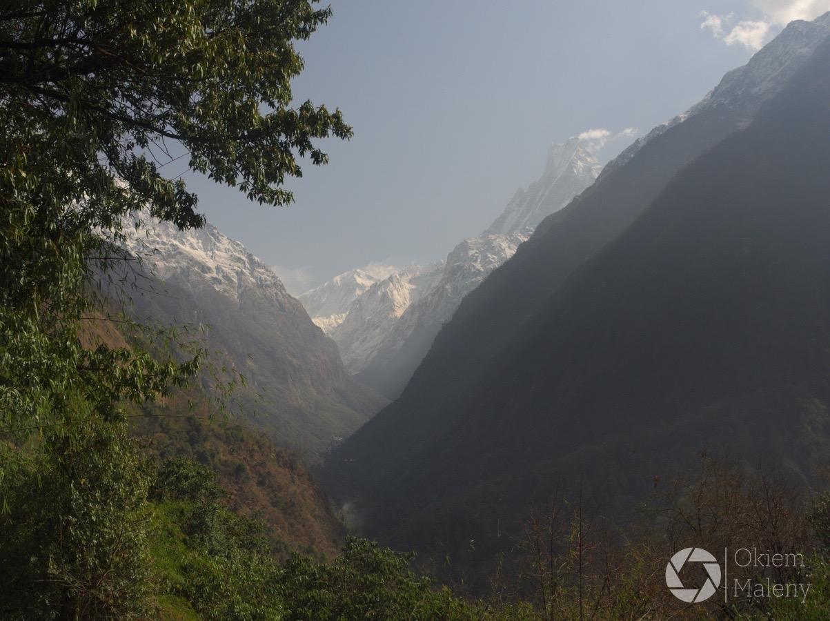 w drodze z Bamboo do Jhinu, Nepal