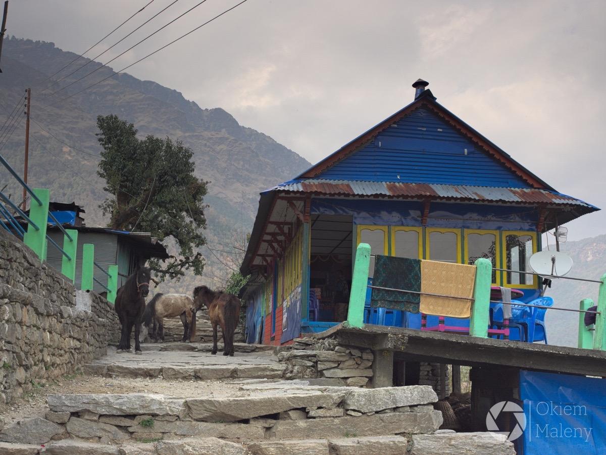 Nepal, Ulleri