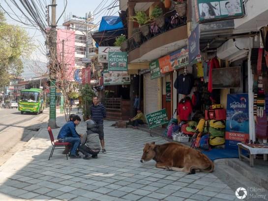 ulice Pokhary