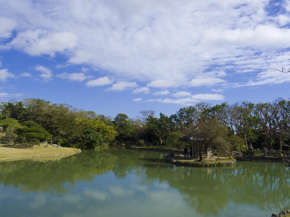 池がきれい