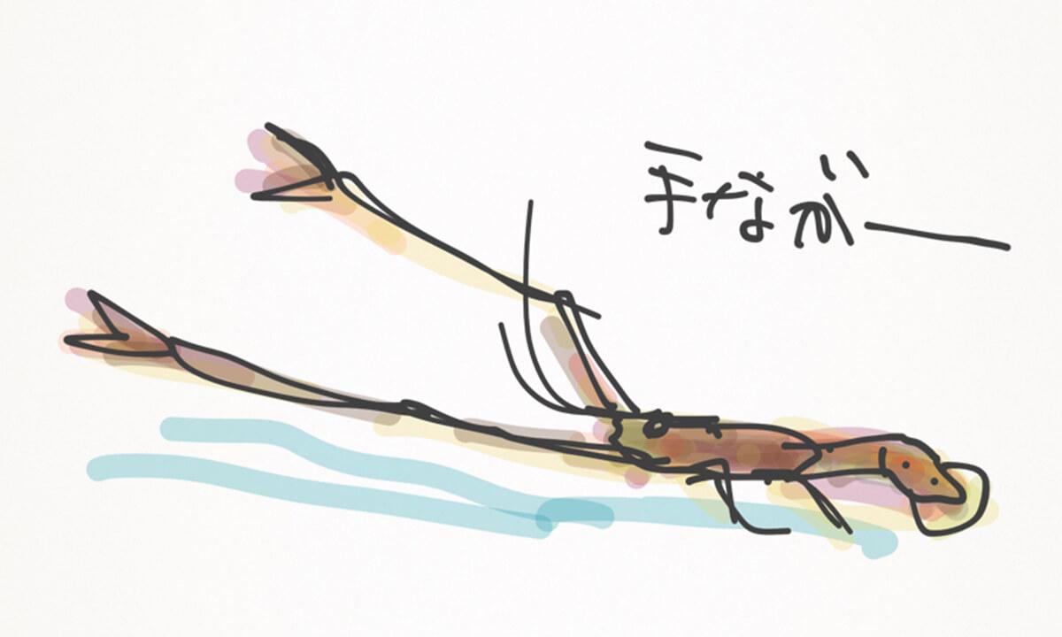 タナガーイメージ
