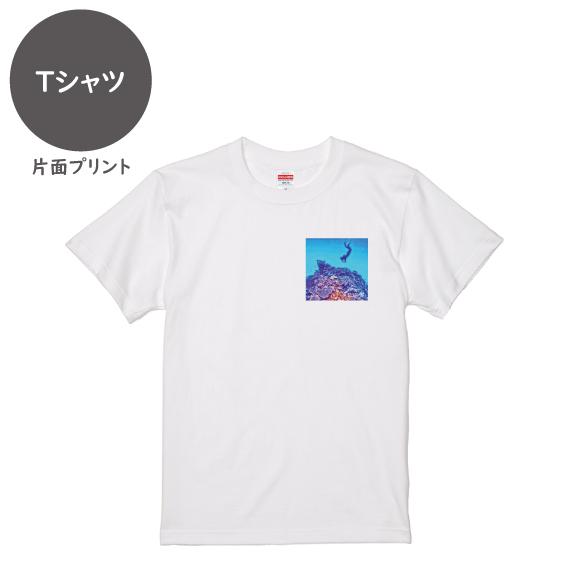 海と自然塾ビティ No.11(Tシャツ)