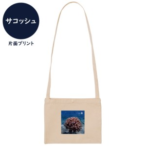 海と自然塾ビティ No.33(サコッシュ)