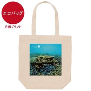 海と自然塾ビティ No.40(エコバッグ)