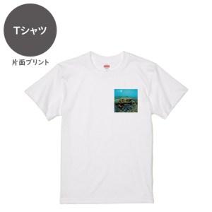 海と自然塾ビティ No.40(Tシャツ)