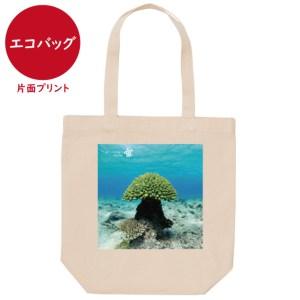 海と自然塾ビティ No.45(エコバッグ)