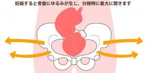 産後骨盤写真 3