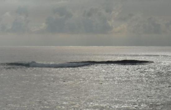 ikeijima