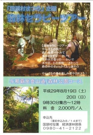 国頭村まつり企画「森林セラピー体験ツアー」のフライヤー