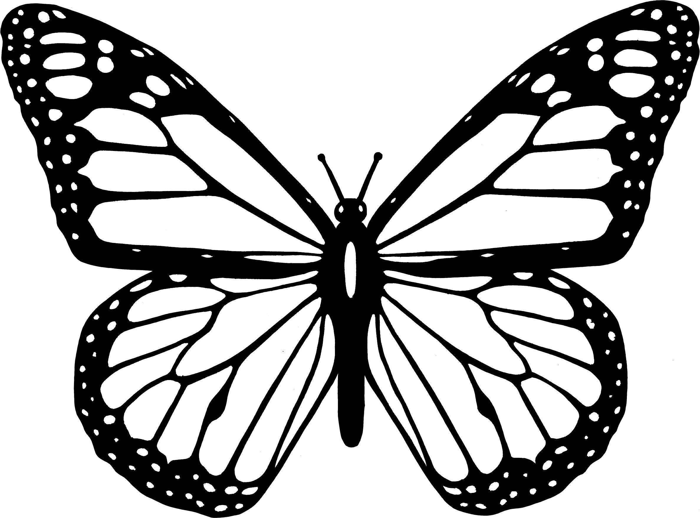 Monarch Butterfly Coloring Pages To Print