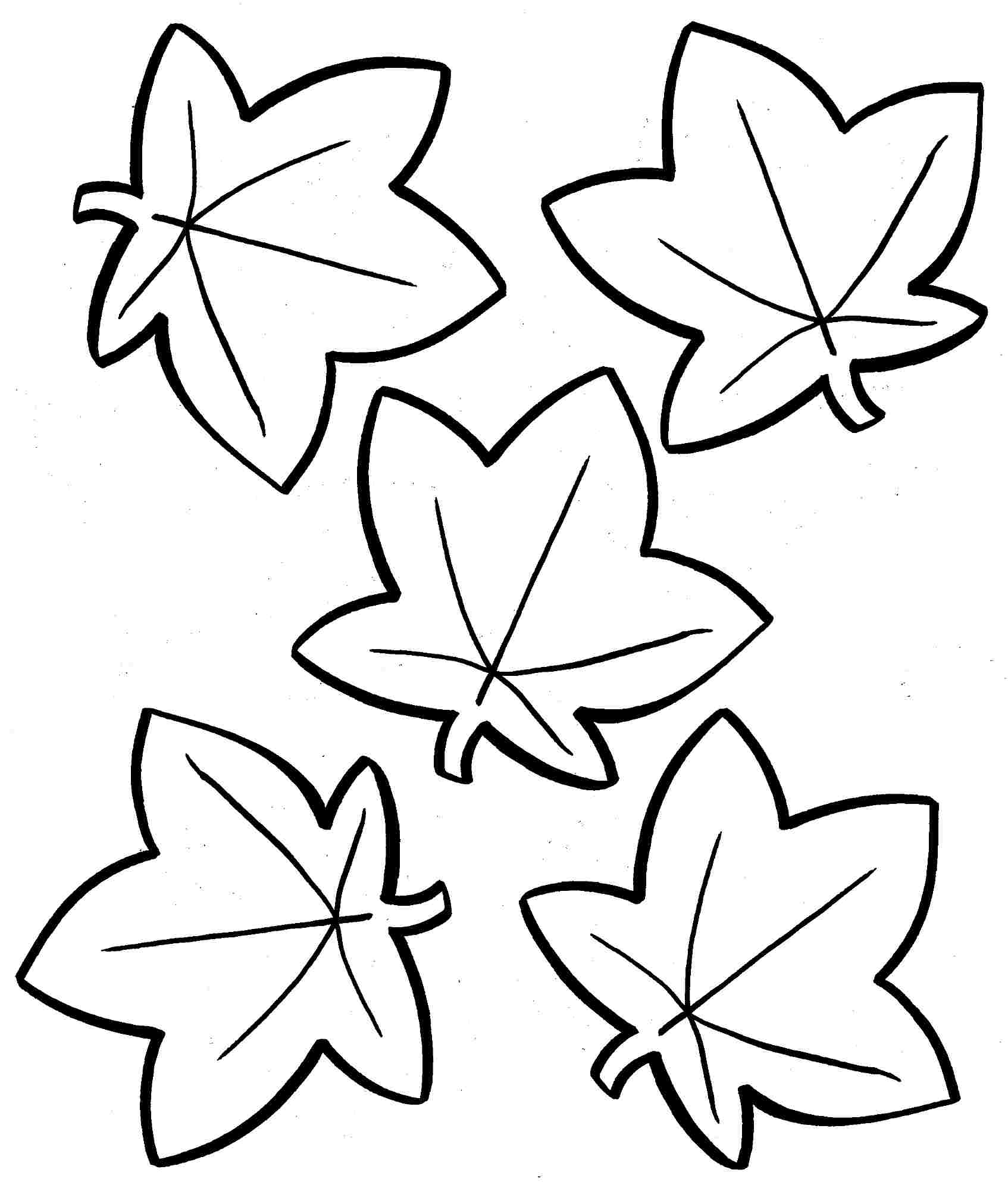 Fall Flowers Coloring Pages Printable Sketch Coloring Page
