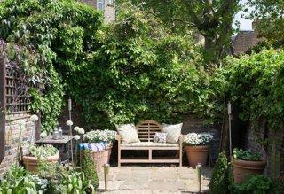 Ideas For Stunning Urban Gardens