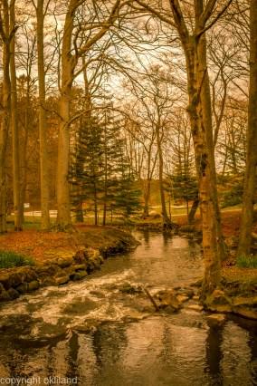 bilde av trær og elv i Sandvedparken sandnes
