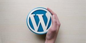 wordpress logo with hand