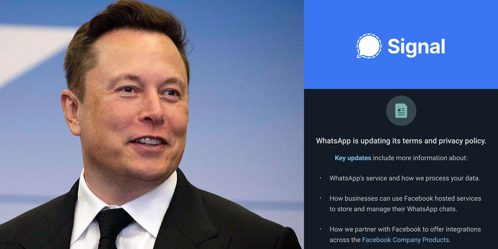 កំពូលមហាសេដ្ឋីលេខ ១ Elon Musk គាំទ្រកម្មវិធីទំនាក់ទំនងសង្គម Signal កំពុងតែមានប្រជាប្រិយភាព