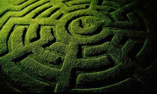 Zdjęcie pochodzi ze strony amazedltd.com