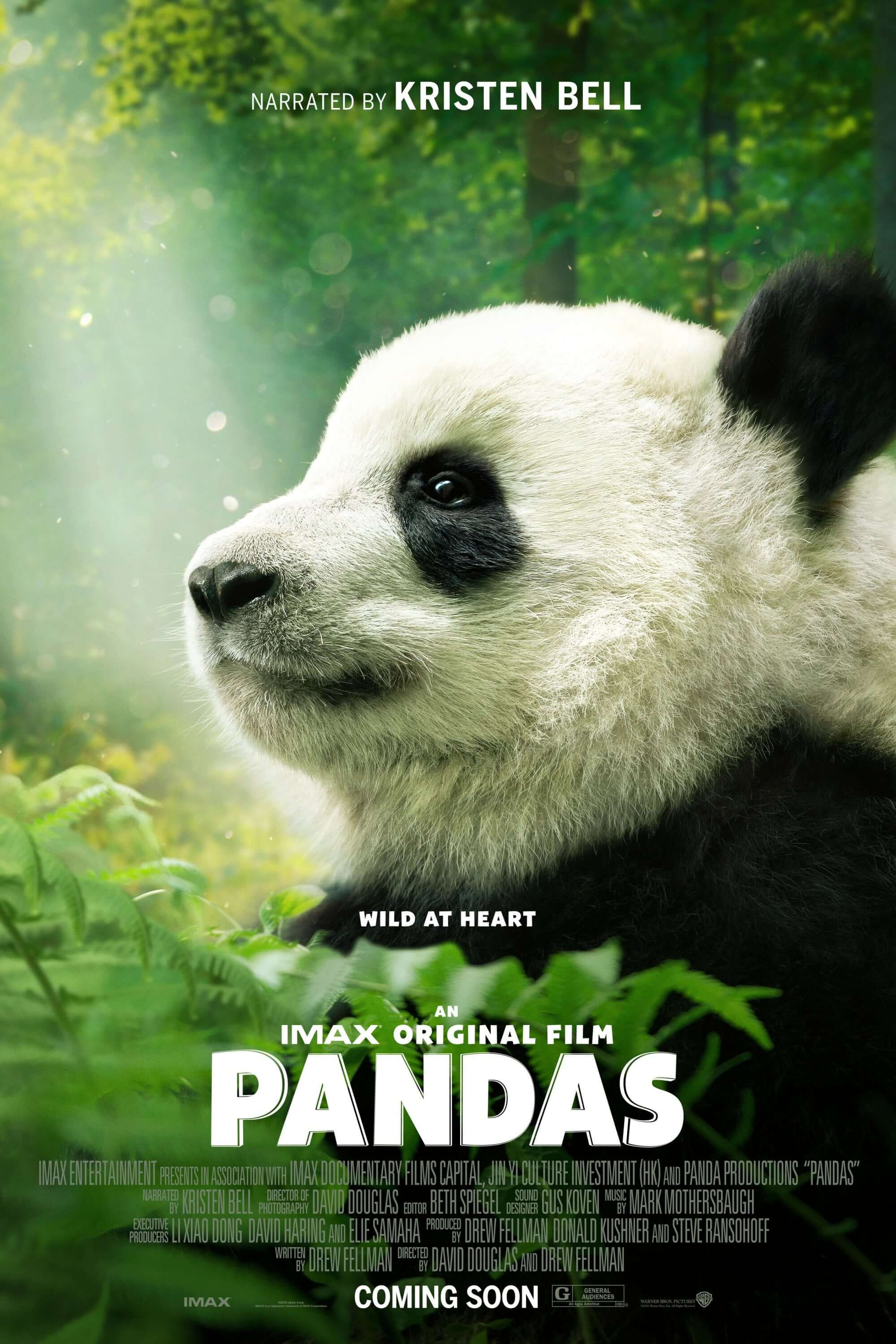 """Poster for the movie """"Pandas"""""""