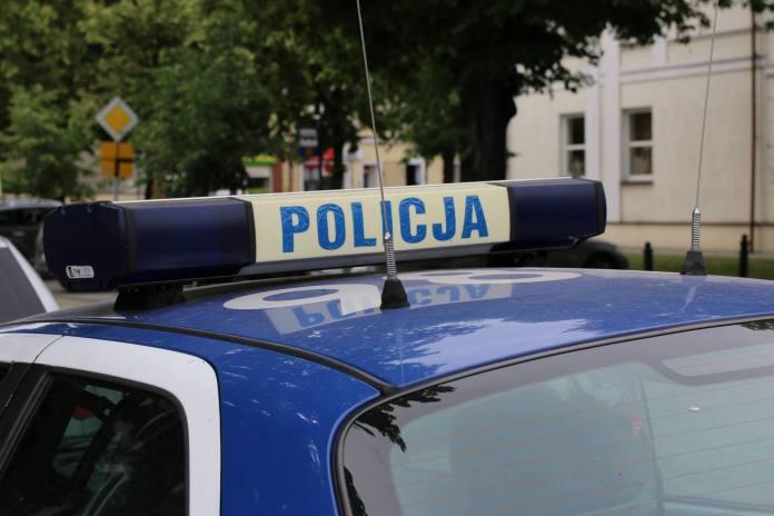 Kolscy policjanci zlikwidowali domową plantację konopi indyjskich