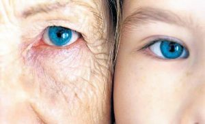 y5 2 300x182 - Niçin Yaşlanıyoruz?