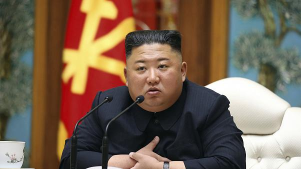 Kuzey Kore Hakkında