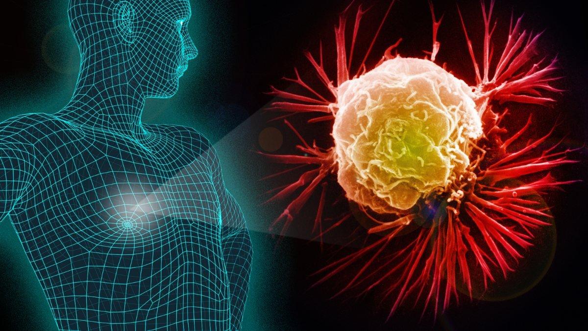 Sivrisineğin koklama duyusuyla kanser dedektörü geliştirildi, OkuGit.Com - Tarih, Güncel, Kadın, Sağlık, Moda Bilgileri Genel Bloğu