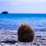 独学で学ぶ貝塚時代の琉球【貝塚時代の食文化】石蒸し料理はもしかしたら沖縄文化の原点かもしれない。