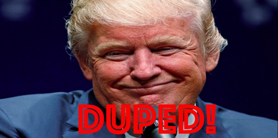 Duped: How Trump Fooled Millions