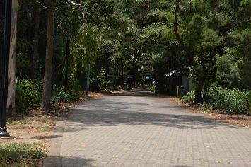 Around Brisbane 3 - FValley 236