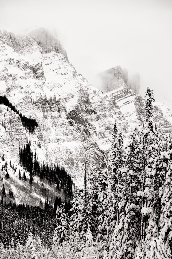 ©osztaba_rockies_winter_20151221__DSF4733-Edit