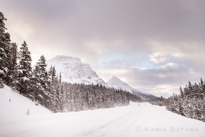 ©osztaba_rockies_winter_20151221__DSF4390