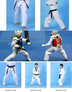 Nama Nama Jurus Karate Sabuk Putih : jurus, karate, sabuk, putih, Latihan, Taekwondo, Sabuk, Putih, Penting, Untuk, Dikuasai, OlahragaPedia.com