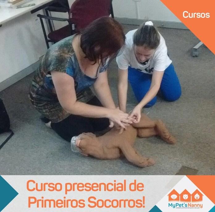 Andressa Gontijo apresenta orientações de primeiros socorros para animais domésticos