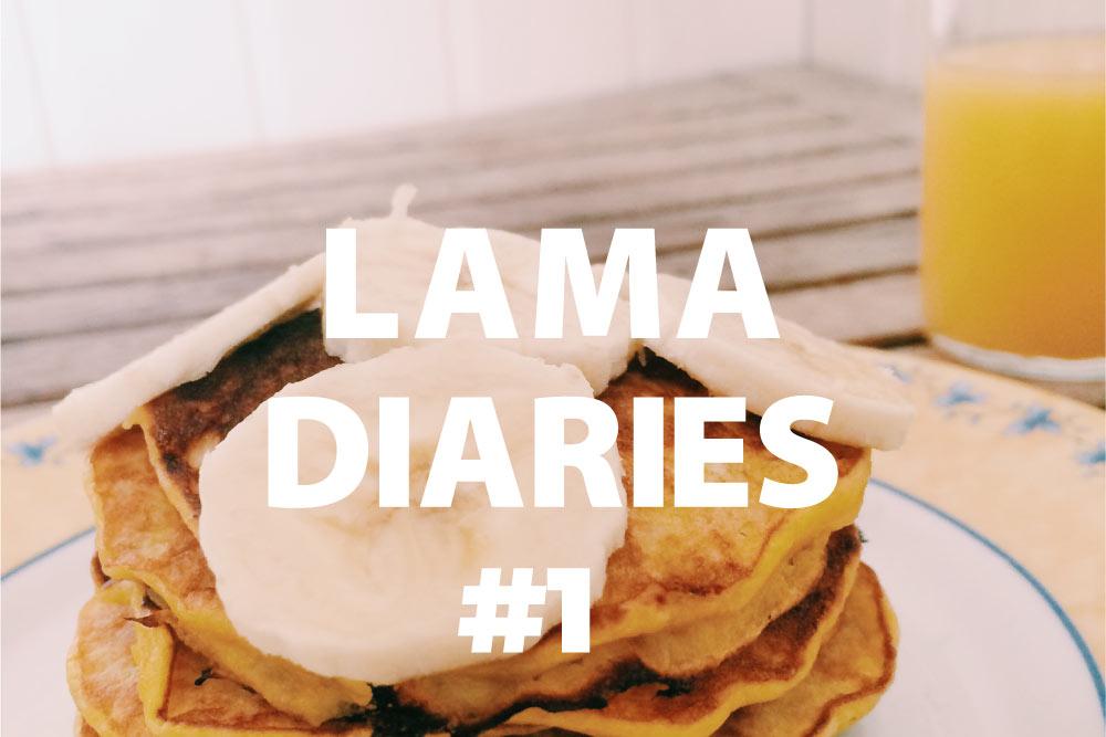 Lama Diaries 1 - Olamelama